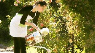 水をやる女性